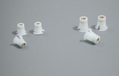 Kunststoffdübel m.Messing-Gewindeeinsatz, 10 Stück